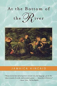 At the Bottom of the River book cover