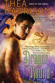 Dragon Bound book cover