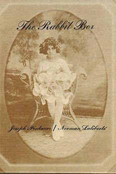 The Rabbit Box book cover