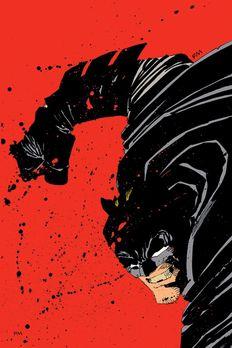 Absolute Dark Knight book cover