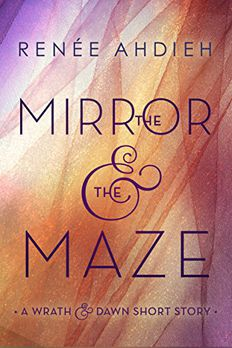 The Mirror & the Maze book cover