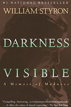 Darkness Visible book cover