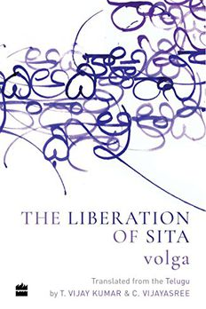 The Liberation of Sita book cover