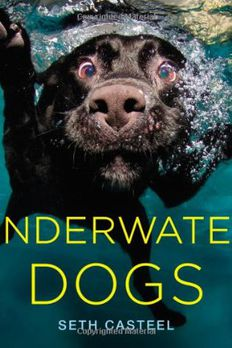 Underwater Dogs book cover