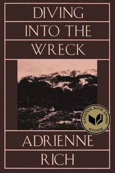 Diving Into The Wreck book cover