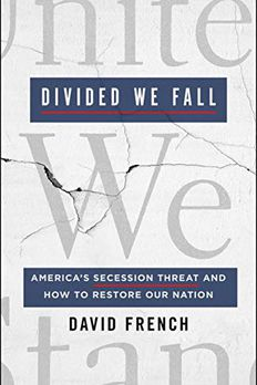 Divided We Fall book cover
