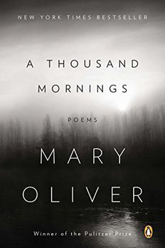 A Thousand Mornings book cover
