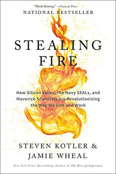 Stealing Fire book cover
