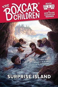 Surprise Island book cover