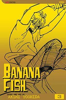 Banana Fish, Vol. 3 book cover