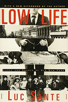 Low Life book cover