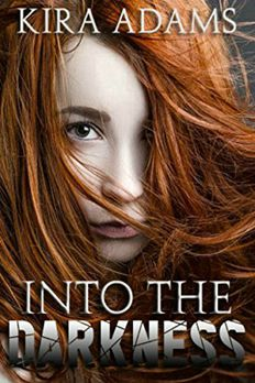 Into the Darkness book cover