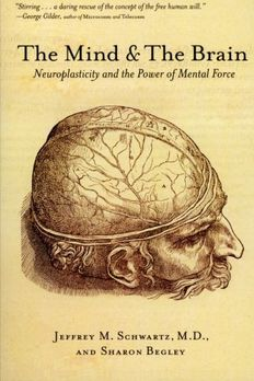 The Mind and the Brain book cover