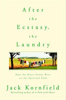 After the Ecstasy, the Laundry book cover