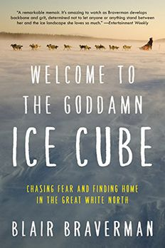 Welcome to the Goddamn Ice Cube book cover