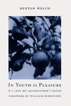 In Youth Is Pleasure book cover