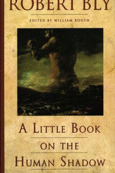 A Little Book on the Human Shadow book cover