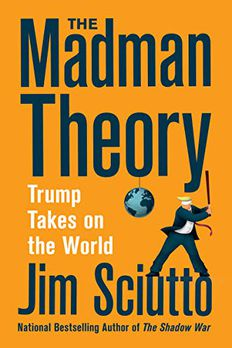 The Madman Theory book cover