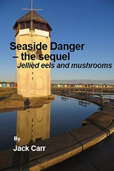 Seaside Danger – the sequel  book cover