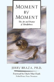 Moment by Moment book cover