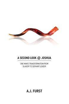 A Second Look @ Joshua book cover