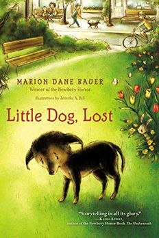 Little Dog, Lost book cover