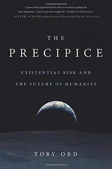 The Precipice book cover