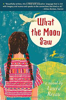 What the Moon Saw book cover