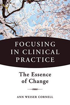 Focusing in Clinical Practice book cover
