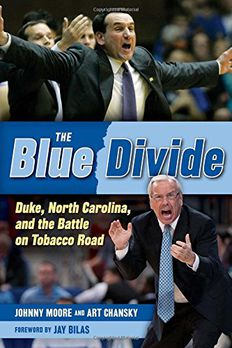 The Blue Divide book cover