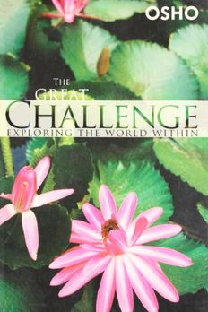 The Great Challenge  book cover