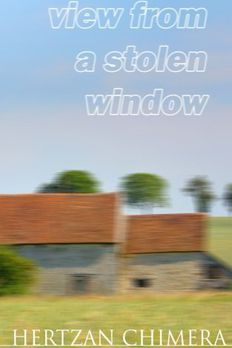View from a Stolen Window book cover