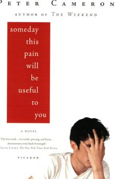 Someday This Pain Will Be Useful to You book cover