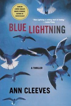 Blue Lightning book cover