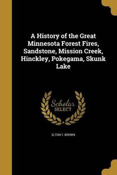 A History of the Great Minnesota Forest Fires book cover