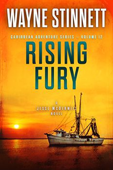 Rising Fury book cover