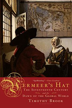 Vermeer's Hat book cover