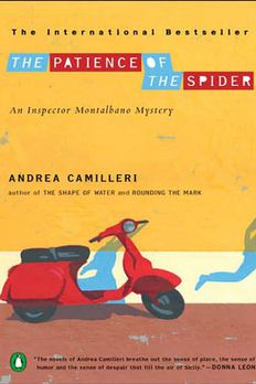 The Patience of the Spider book cover