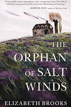The Orphan of Salt Winds book cover