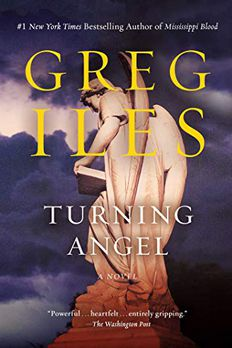 Turning Angel book cover