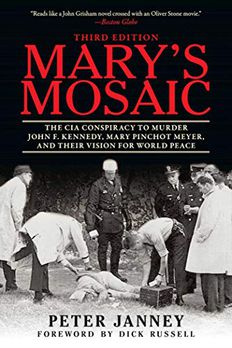 Mary's Mosaic book cover