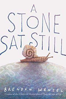 A Stone Sat Still book cover