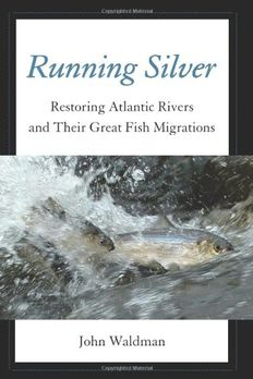 Running Silver book cover