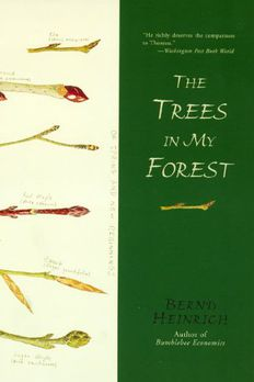 The Trees in My Forest book cover