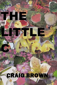 The Little C book cover
