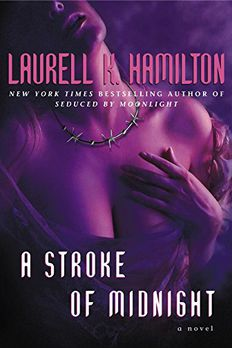 A Stroke of Midnight book cover