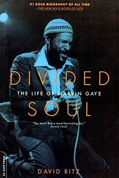 Divided Soul book cover