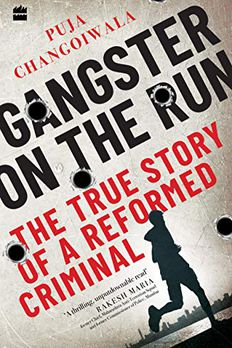 Gangster on the Run  book cover