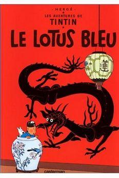 Les Aventures de Tintin  book cover