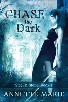 Chase the Dark book cover